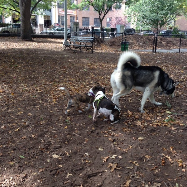 Photo taken at Marcus Garvey Park - Dog Run by Ashley J. on 10/13/2013