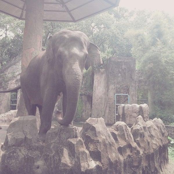 Photo taken at Kebun Binatang Ragunan by Agnes S. on 8/31/2013