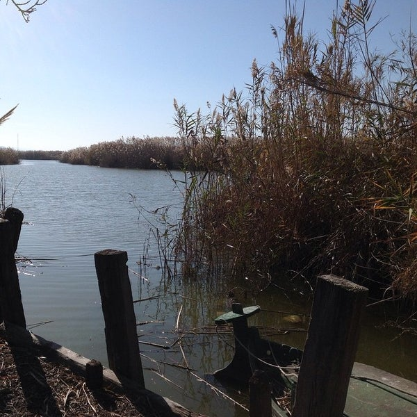 Photo taken at La Albufera by Cova Morales (. on 1/13/2015