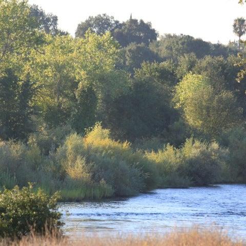 American river bike trail trail in mather for Lake natoma fishing