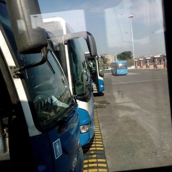 Foto scattata a Terminal Bus Anagnina da Silvano F. il 4/8/2014