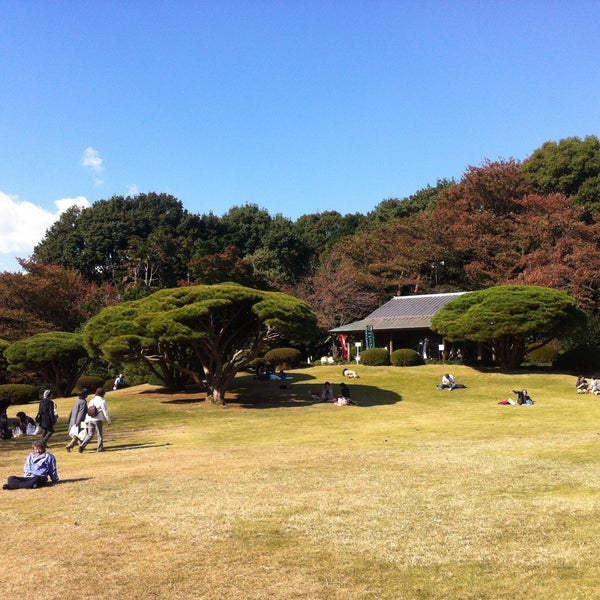 Photo taken at 新宿御苑 (Shinjuku Gyoen) by Amo W. on 11/20/2012