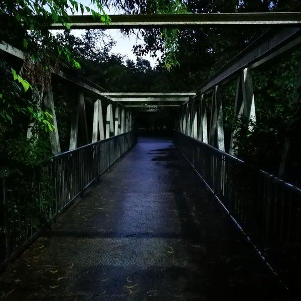 Photo taken at Queen Sirikit Park by Prapat C. on 9/1/2016