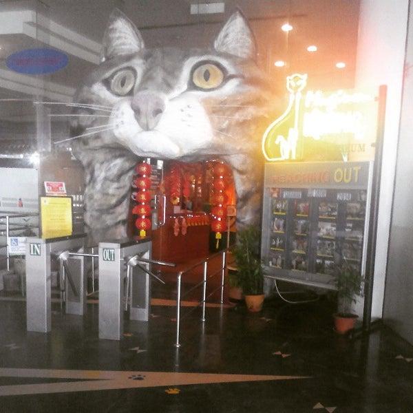 Photo taken at Cat Museum (Muzium Kucing) by Mumusan M. on 2/24/2015
