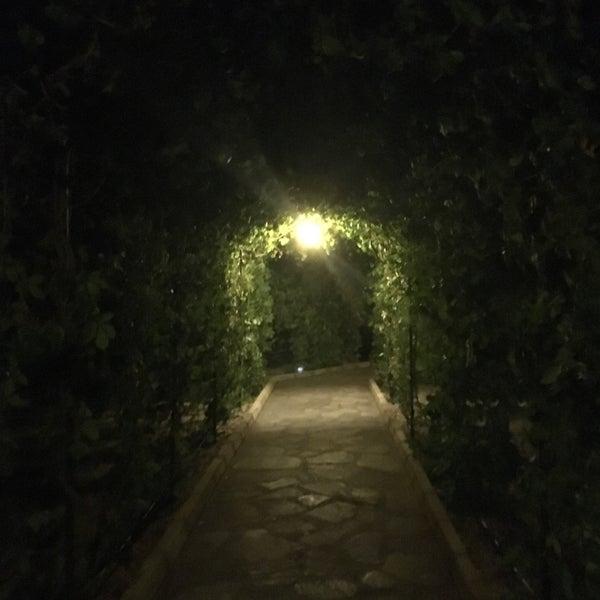 6/28/2017 tarihinde Elifff Y.ziyaretçi tarafından Club Paradiso Hotel & Resort'de çekilen fotoğraf