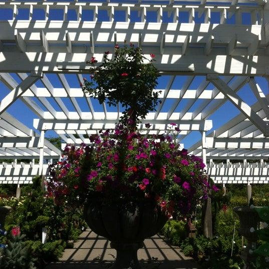 corrado 39 s garden center 1 tip