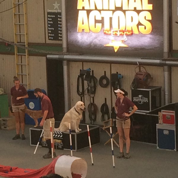 Photo taken at Universal's Animal Actors by Michael D. on 9/28/2016