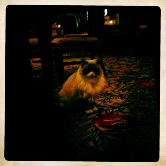 Photo taken at Algonquin Hotel, Autograph Collection by Jaimie C. on 8/30/2011