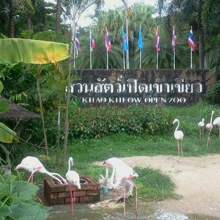 Photo taken at สวนสัตว์เปิดเขาเขียว (Khao Kheow Open Zoo) by Tassayu J. on 9/7/2012