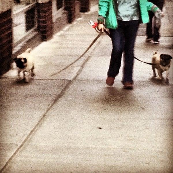 Photo taken at MTA Subway - York St (F) by chuckdafonk F. on 4/27/2012