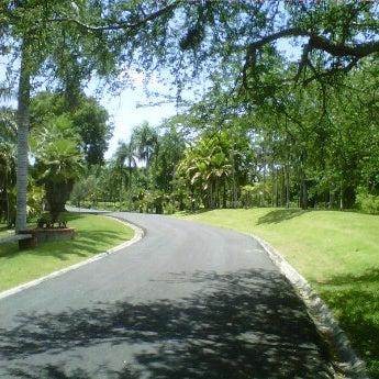 Photo taken at jardin bot nico nacional by emmanuel t on for Jardin botanico nacional
