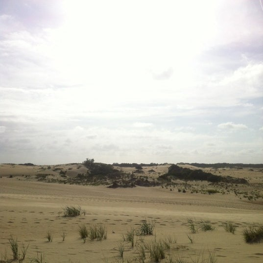 Photo taken at Jockey's Ridge State Park by Tom P. on 6/14/2012