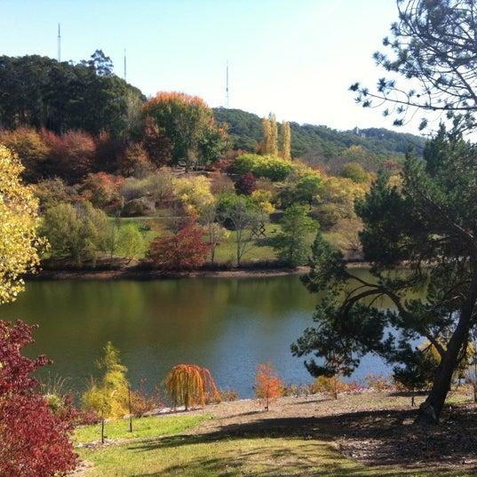 Mount Lofty Botanic Garden 16 Lampert Rd