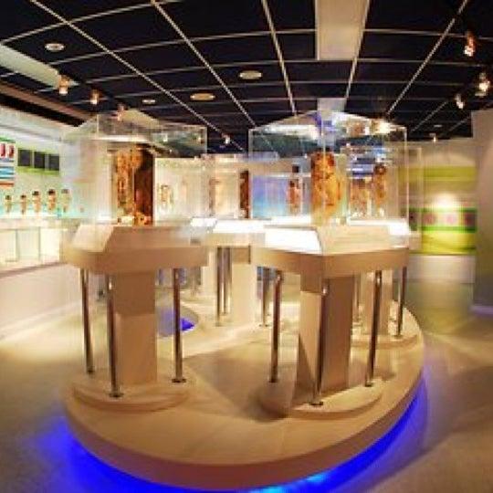 พิพิธภัณฑ์การแพทย์ศิริราช (Siriraj Medical Museum ...