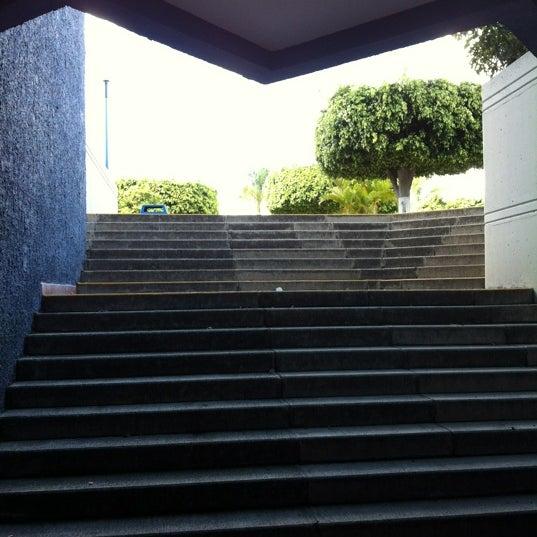 Photo taken at Universidad del Valle de Atemajac (UNIVA) by David on 2/18/2012