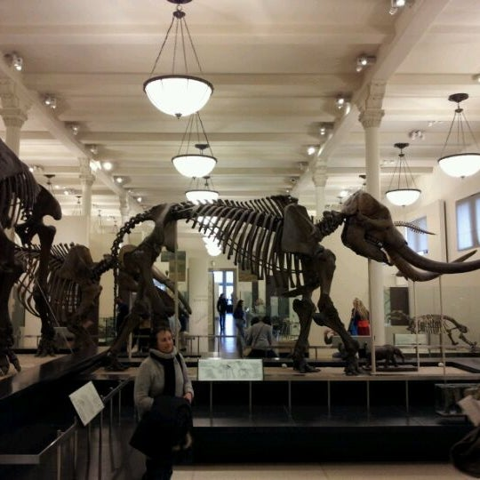 Photo taken at David H. Koch Dinosaur Wing by Christian L. on 2/16/2012