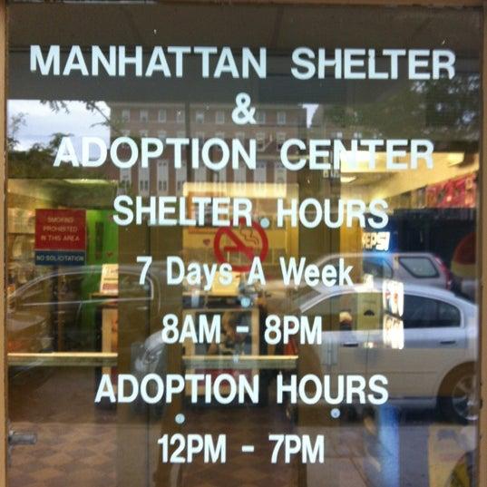 Pet Food City Staten Island Hours