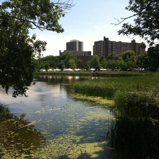 Photo taken at Loring Park by David W. on 8/4/2012