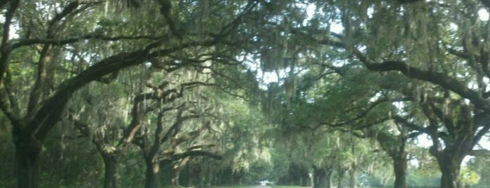 Boone Hall Plantation is one of Charleston, SC #visitUS.