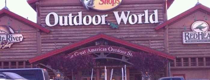 Bass Pro Shops is one of North Ga chill spots.
