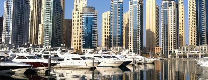 Dubai Marina Yacht Club is one of Explore Dubai.
