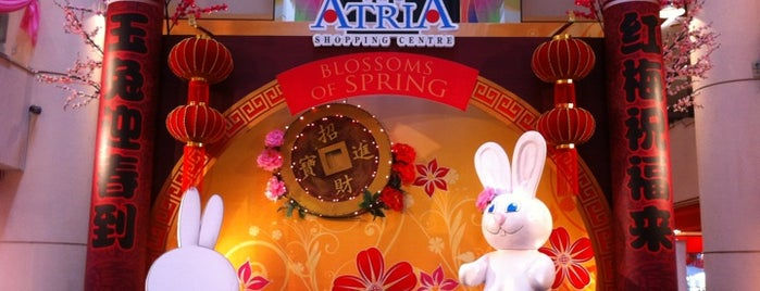 Atria Shopping Centre is one of Shopping Malls.