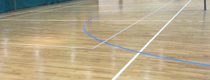 Alarabi Sports Club is one of Courts Kuwait.