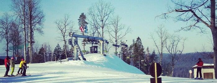 OZOLKALNS ski resort and camping is one of Slēpošanas kalni.