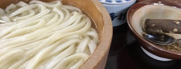 うどん商人つづみ屋 is one of めざせ全店制覇~さぬきうどん生活~ Category:Ramen or Noodle House.