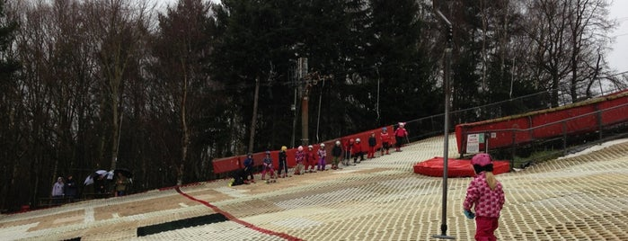 Alpine Snowsports Centre is one of Ski.