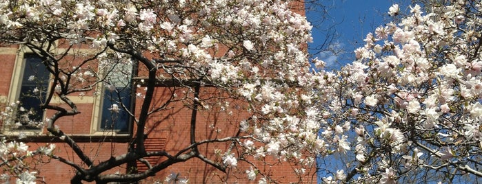 Jefferson Market Garden is one of NYC Stay-cation.