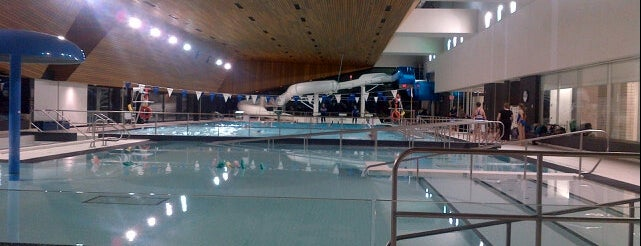 The 15 best places with a swimming pool in toronto for Swimming pool supplies toronto