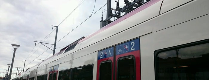 Bahnhof Beinwil am See is one of Bahnhöfe Top 200 Schweiz.