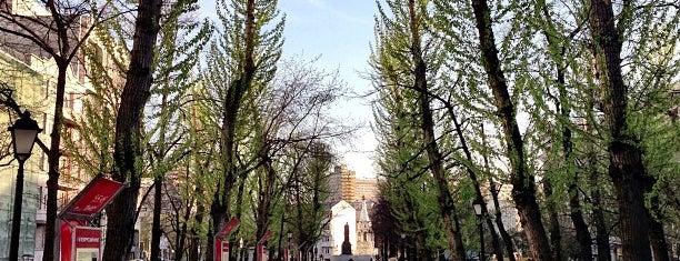 Tverskoy Boulevard is one of Места.