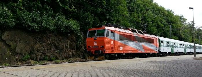 Železniční zastávka Týnec nad Labem is one of Železniční stanice ČR: Š-U (12/14).