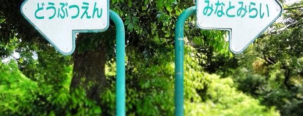 野毛山公園 is one of 歴史(明治~).