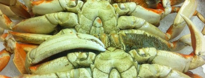 Monterey Fish Company is one of El Camino Real.