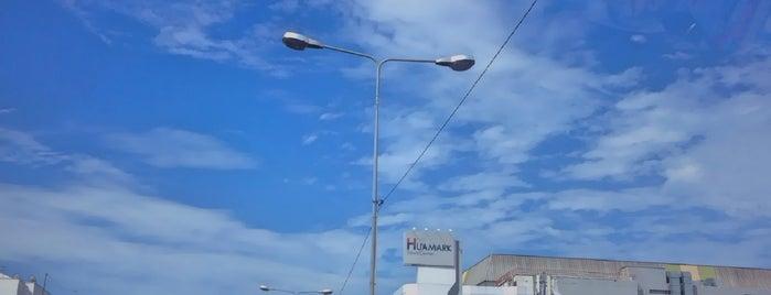 ทางยกระดับถนนรามคำแหง (Ramkhamhaeng Road Elevated) is one of ถนน.