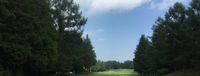 望月東急ゴルフクラブ is one of Top picks for Golf Courses.