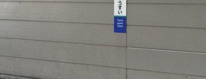 東京都立東大和南高等学校 is one of 都立学校.