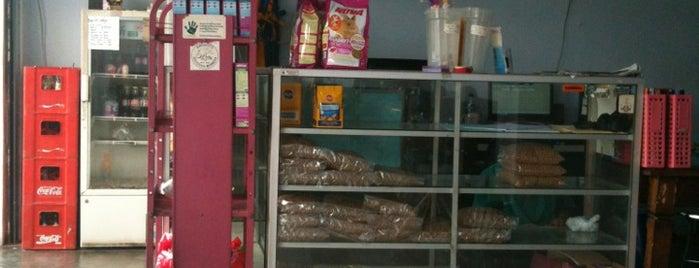 Calico Veterinary (Dokter Hewan) is one of Pet Shop.