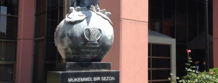 Beşiktaş Jimnastik Kulübü is one of x.