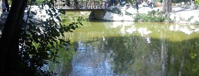 Εθνικός Κήπος (National Garden) is one of Favorite Spots in Athens.