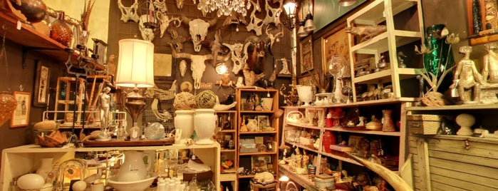 Uncommon Objects is one of todo in Austin.