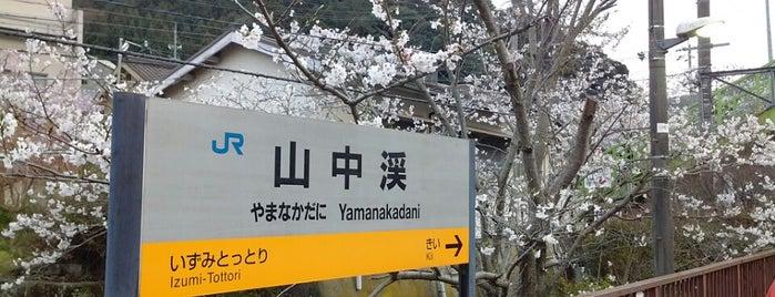 Yamanakadani Station is one of 阪和線.
