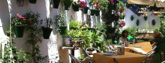 Restaurante Sociedad Plateros Maria Auxiliadora is one of Donde comer y dormir en cordoba.