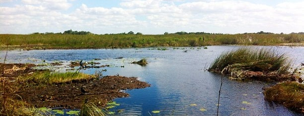 Everglades National Park is one of When in Miami....