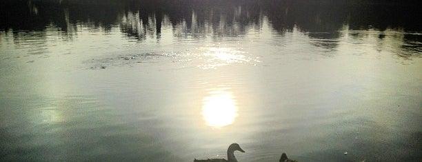 Lago Mayor is one of Lugares para robar corazones.