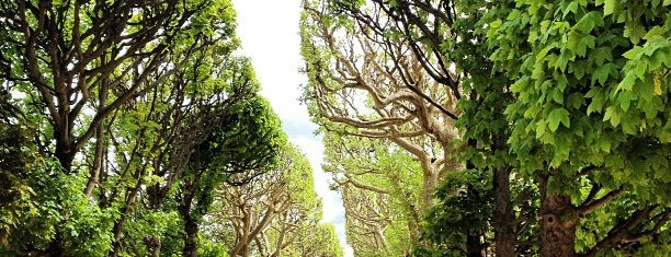 Botanical Garden of Paris is one of First Time in Paris?.