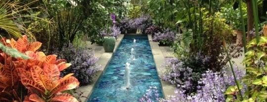 United States Botanic Garden is one of DC Area.